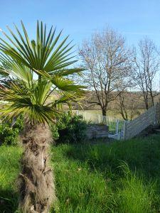 Location-insolite-gîte La Bella Rocoma Jardin  Février 2014